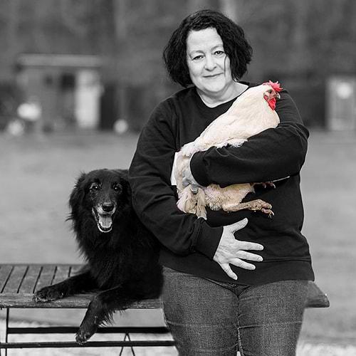 Hühnerrettung NRW - Abbildung Petra Becker