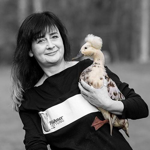 Hühnerrettung NRW - Abbildung Sandra Joeres